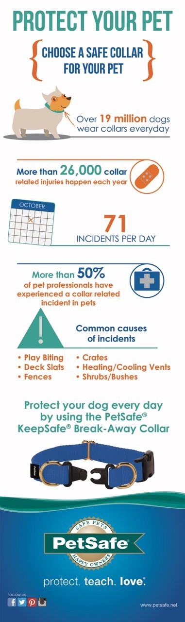 collar-safety-awareness-infographic